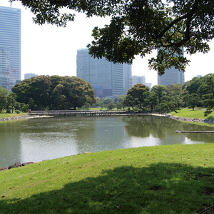 Hamarikyu gardens with a historic duck hunting site